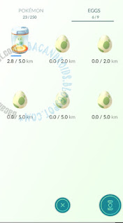 Cara Membuat Pokemon Cepat Berevolusi(Evolve) dan menetaskan telur