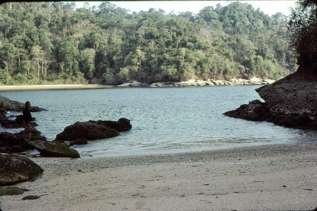Pantai Permisan, Taman Nasional Meru Betiri