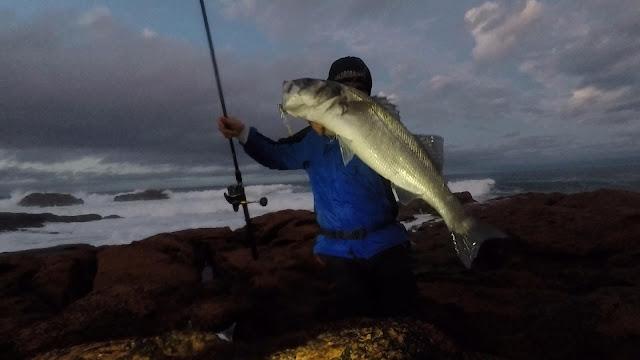 ROBALO - Pescando a la robaliza con mar bravo 🌊 🌊 🌊
