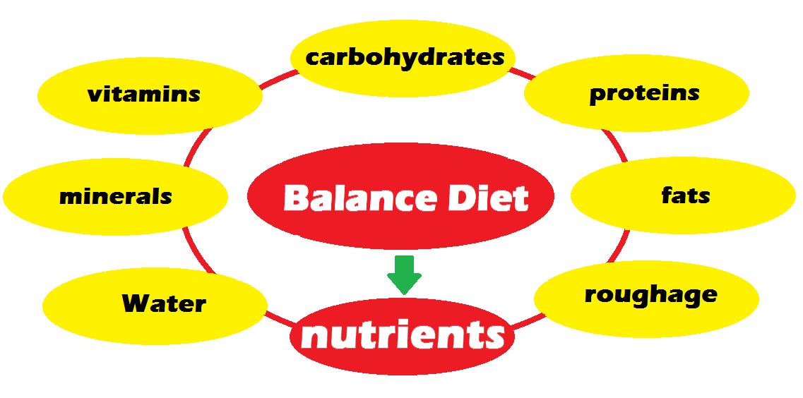 Balance Diet, What is Balance Diet, Nutrients and its components