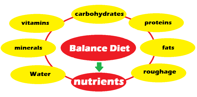 Balance Diet - What is Balance Diet, Nutrients and its components: Science