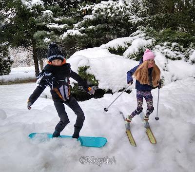 Barbie winter sports