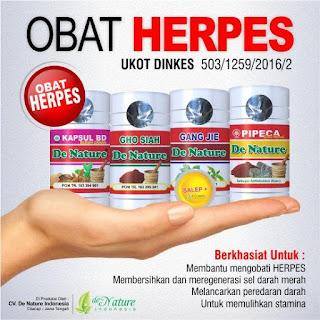 Penyebab Penyakit Herpes Pada Kelamin dan Pengobatannya