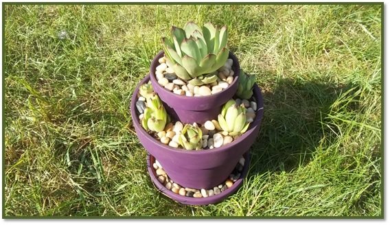two tier planter