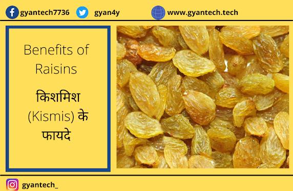 Benefits Of Raisins In Hindi Language