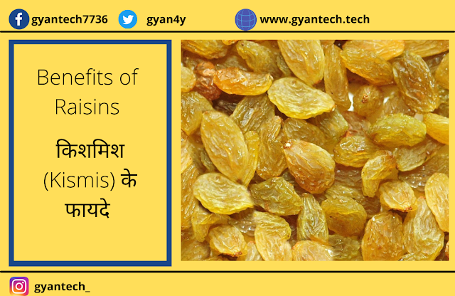 10 फायदे  किशमिश (Kismis) के । Benefits of Raisins