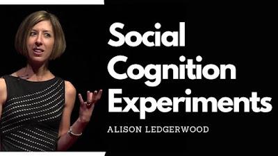 Alison Ledgerwood Social Experiments