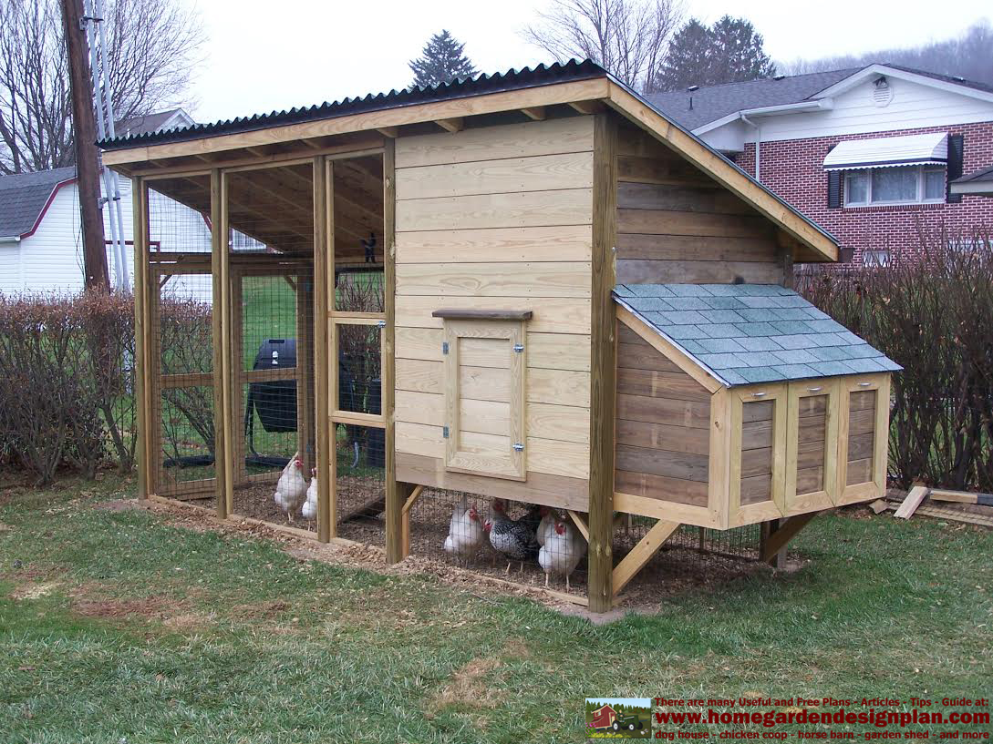 Chicken Coop Plans Hawaii | chicken house plans