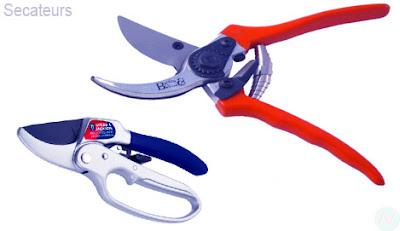 Secateurs tool, secateurs gardening tool