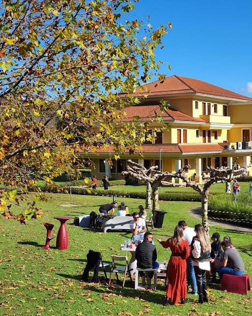 Wine Garden Miolo