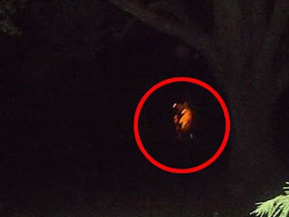 Alleged 'ghost photo' from a cave near Toowoomba, Queensland.