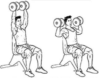 Dumbbell overhead press, barbell overhead press, shoulder exercise, body building, delts, delts workout, body kaise banaye,