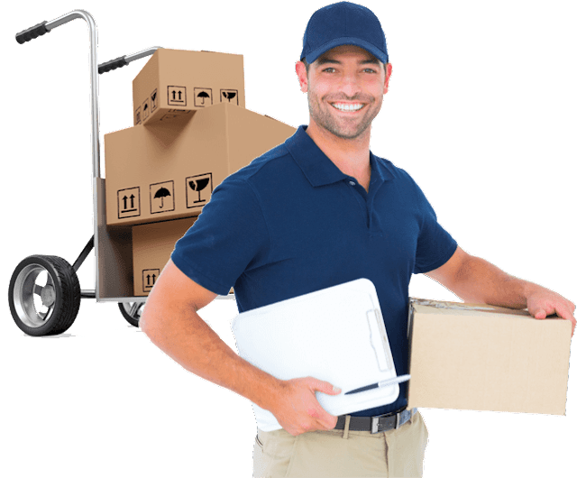 Movers and Packers in UAE - What You Can Expect