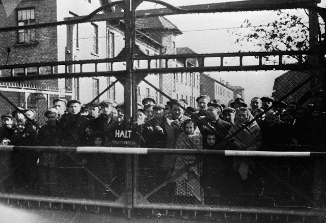 Auschwitz was a complex of German concentration camps and extermination camps that arose between 1940 and 1945. It was located near Oświęcim, a Polish territory that after being annexed by the Third Reich in 1939 became known by its German name, Auschwitz. In the photo: Auschwitz prisoners before being released by Soviet troops.