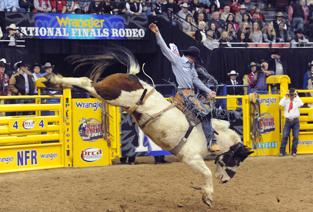 National Finals Rodeo em Las Vegas