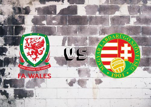 Gales vs Hungría  Resumen