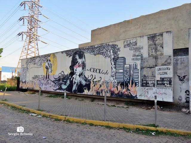 Vista do Grafite pintado na parede lateral da Estação Carandiru do  Metrô de São Paulo