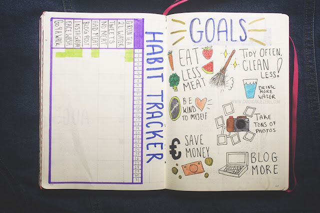 July 2017 bullet journal set up habit tracker and goals page inspiration