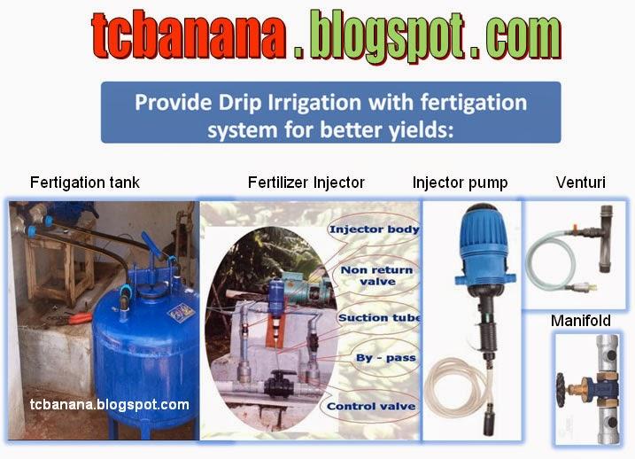Fertigation Injectors Pdf