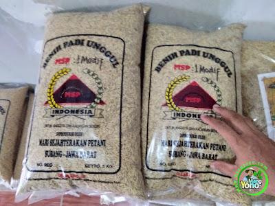 NURODIN Indramayu, Jabar. Pembeli Benih Padi Sertani / MSP 1 Modif