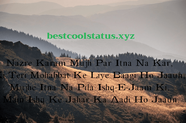 Latest Shayari For Love, True Love Status & Quotes, Love Images