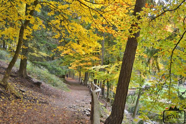 Austria park Sparbach
