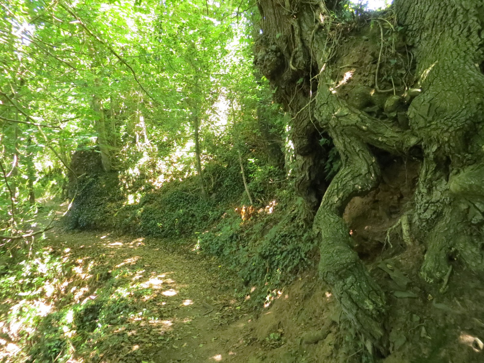The Faery Folklorist: The Fairies and Pixies of Exmoor