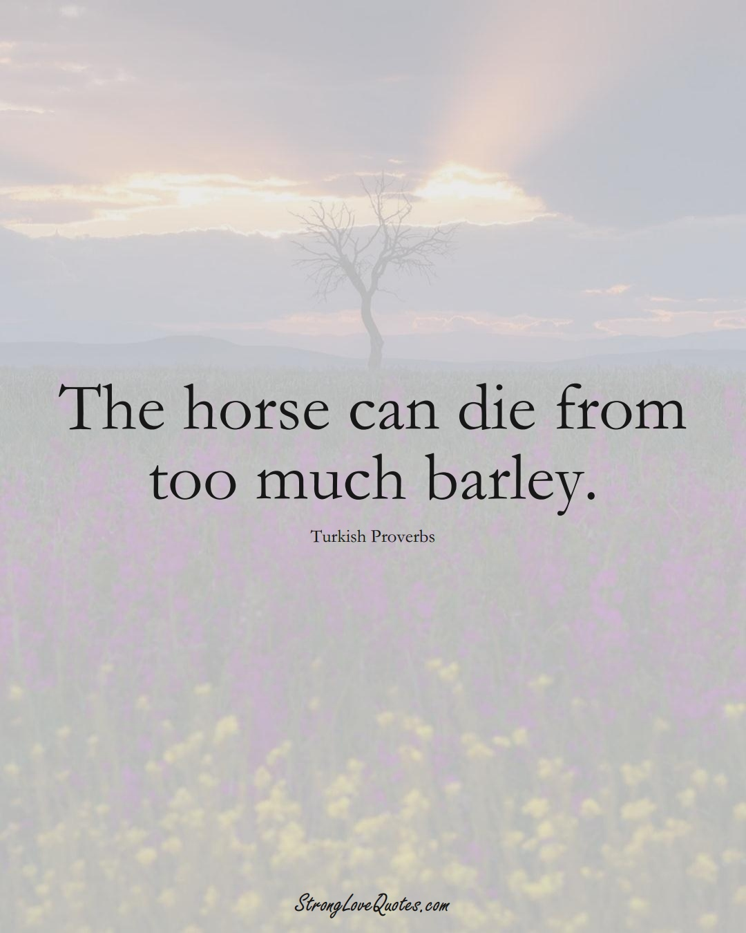 The horse can die from too much barley. (Turkish Sayings);  #MiddleEasternSayings