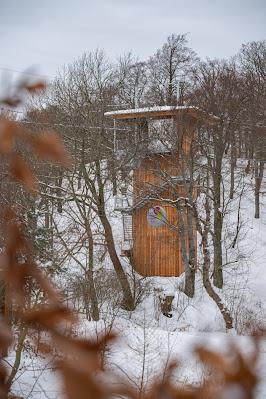 Winterwandern in Bad Harzburg | Kleiner und Großer Burgberg und Besinnungsweg | Baumschwebebahn | Wandern im Harz 15