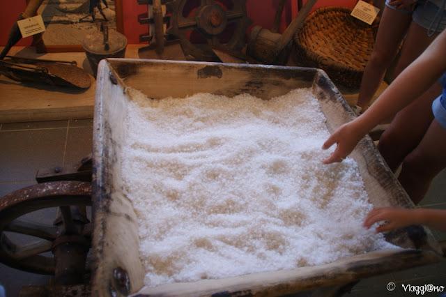 Il sale nel Museo del Sale di Aigues Mortes