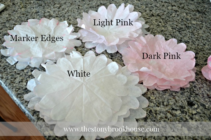 Coffee Filter Peony Color Effects