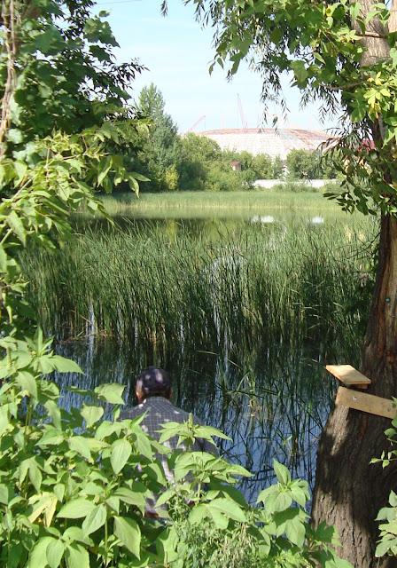 """Пос. Радиоцентр, озеро, строящийся стадион """"Самара Арена"""""""