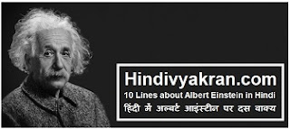 10 Lines about Albert Einstein in Hindi
