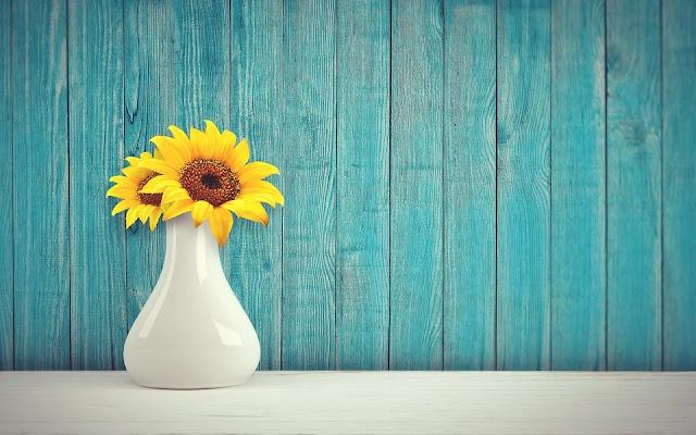 vaso-arredamento-design-colori