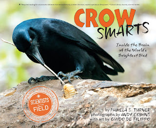 review of Crow Smarts by Pamela S. Turner
