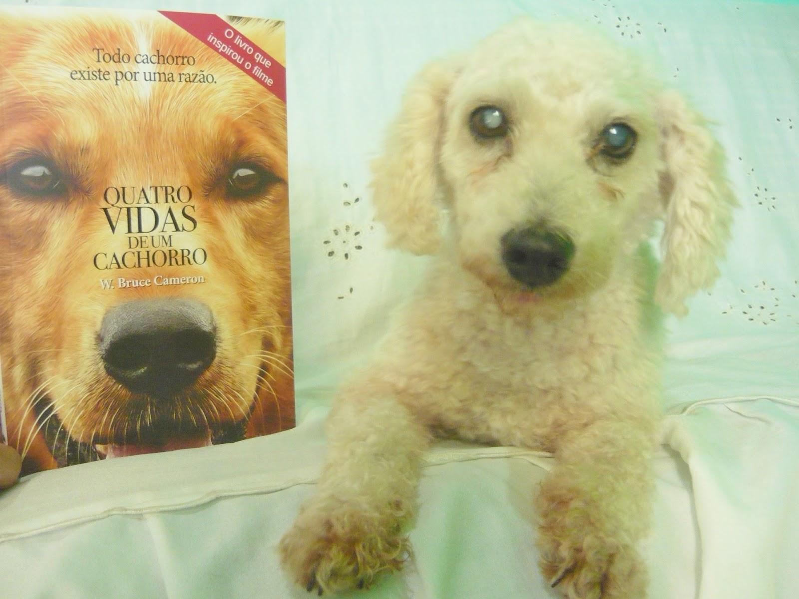 Tag Quatro Vidas De Um Cachorro Livro Frases