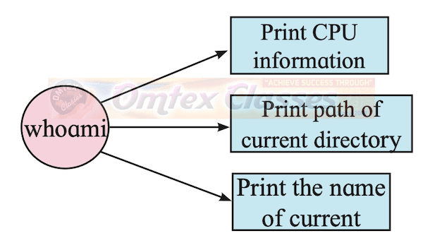 Chapter 1 - Basics of Information Technology Balbharati solutions for Information Technology (IT) 11th Standard HSC Maharashtra State Board