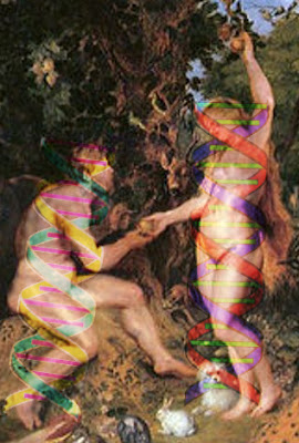 The detailed article linked here discusses how the creation science model for genetics explains recent creation of Adam and Eve.