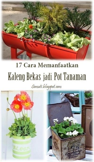 17 Cara Manfaatkan Kaleng Bekas jadi Pot Tanaman