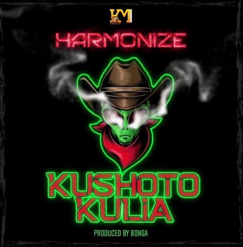 Kushoto Kulia Lyrics - Harmonize