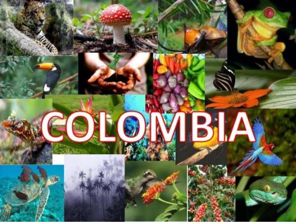 bidodiversidad de colombia