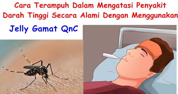 Cara Terbaik Dalam Mengatasi Penyakit Chikungunya