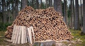 Perencanaan Pemanenan kayu adalah perancangan yang melibatkan hutan serta isinya, manusia, alat-alat yang dibutuhkan dan biaya untuk melakukan produksi kayu secara lestari bagi masyarakat yang butuh dan memperoleh nilai plus baik bagi perusahaan tertentu, masyarakat sekitar hutan, regional serta nasional, pada batas waktu yang telah ditentukan (Junaedi, 2020). Selanjutnya, Staaf & Wiksten (1984) mendefinisikan perencanaan pemanenan sebagai suatu keputusan untuk menetapkan kegiatan yang akan dilakukan di masa yang akan datang.