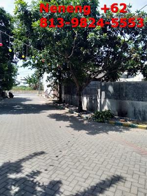 Jual Rumah Fasilitas Lengkap Sidoarjo, Tanah Masih Luas, Dekat Tol ke Krian, Neneng 0813-9824-5553