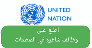 منظمات,وظائف,وظائف المنظمات في عدن,وظائف المنظمات في اليمن,شرح الوظائف في المنظمات,منظمات غير حكومية,وظائف المنظمات في تعز,وظائف المنظمات في صنعاء,المنظمات,وظائف المنظمات الدوليه في كندا,منظمات اللاجئين,منظمات غير ربحية,وظائف المنظمات في الجمهورية اليمنية,وظائف المنظمات الدولية والمحلية في اليمن,المنظمات الانسانية،,المنظمات غير الحكومية,انواع العمل في المنظمات,cv للعمل في المنظمات الدولية,وظائف قريبة مني,منظمات الاعمال,منظمات ألمانية,موقع وظائف