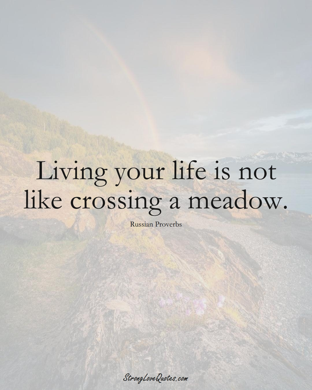 Living your life is not like crossing a meadow. (Russian Sayings);  #AsianSayings