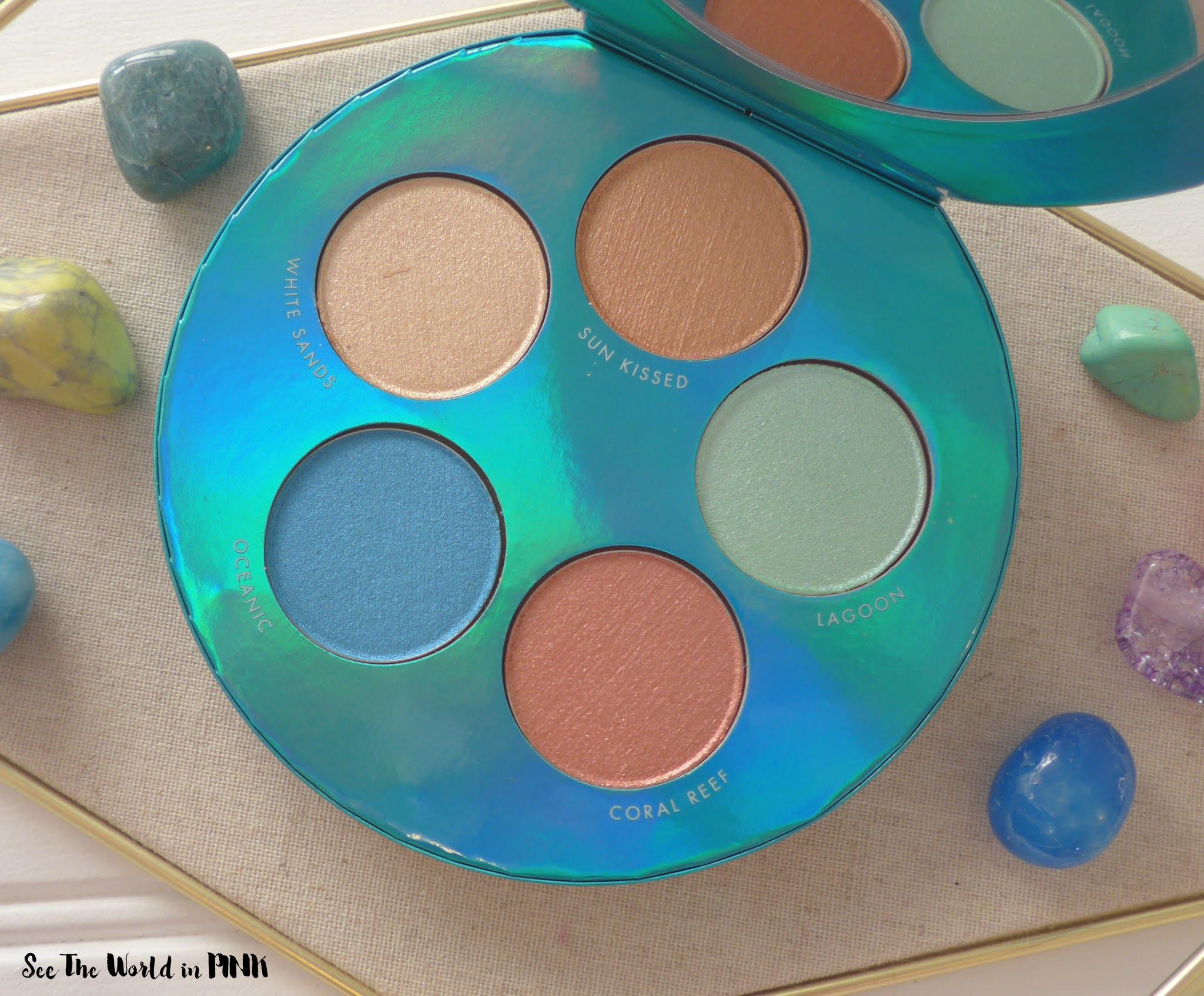 Shared Planet Sea Turtle Sea Turtle Highlighting Palette