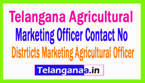 Distrtict Agricultural Marketing Officer Contact No.Email in Telangana State