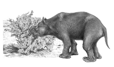 Hunting or climate change? Megafauna extinction debate narrows