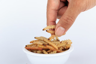 Edible-insects-health-benefits